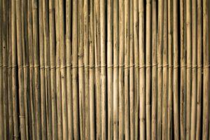 bambus, zero waste